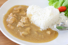 Rice with Curry Chicken. Stock Image