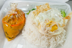 Rice and curry with fried egg Royalty Free Stock Photography