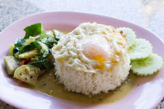 Rice with curry and fried egg Stock Photography