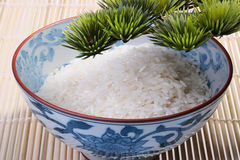 Rice in deep teabowl Stock Photo