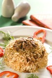 Rice with diced meat Royalty Free Stock Photos
