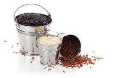 Rice. Stock Photos