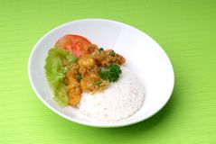 Rice dinner Royalty Free Stock Photography