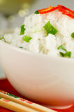Rice dish Royalty Free Stock Photography