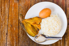 Rice and Dried fish Stock Image