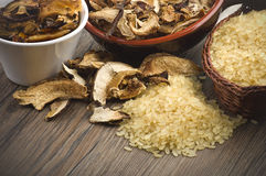 Rice and dried porcini mushrooms Royalty Free Stock Photography