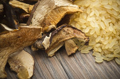 Rice and dried porcini mushrooms Royalty Free Stock Image