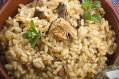 Rice and dried porcini mushrooms Stock Image