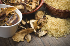 Rice and dried porcini mushrooms Stock Images