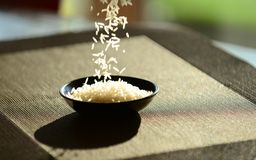 Rice drops Royalty Free Stock Images