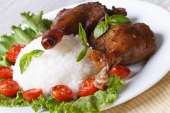 Rice with duck leg and lettuce closeup horizontal Stock Photography