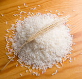 Rice and ear Royalty Free Stock Photography