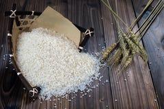 Rice Royalty Free Stock Image