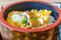 Rice with eel Royalty Free Stock Photos