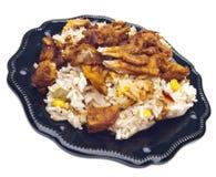 rice för pork för bbq-mål organisk Arkivbild