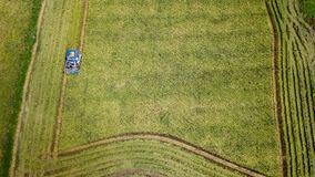 Rice farm on harvesting season by farmer with combine harvesters. And tractor on Rice field plantation pattern. photo by drone from bird eye view in countryside royalty free stock images