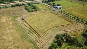 Rice farm on harvesting season by farmer with combine harvesters. And tractor on Rice field plantation pattern. photo by drone from bird eye view in countryside royalty free stock photo