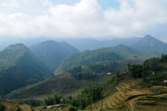 Rice farming with farmer cabin on Vietnam mountainrange Royalty Free Stock Images