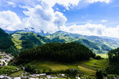 Rice fiel in the mountainous town Stock Image