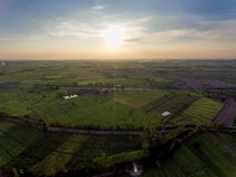 Rice Field in Asia. Aerial View in Thailand Royalty Free Stock Photo
