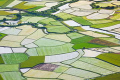 Rice field in Bac Son, Vietnam Stock Photography
