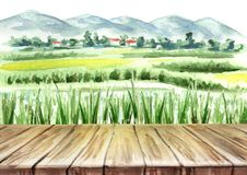 Rice field and empty table background. Watercolor hand drawn illustration. Rice field and empty table background. Watercolor hand drawn illustration Stock Image