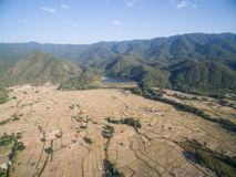 Rice field after harvests season by aerial view Stock Images