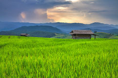 Rice field and huts on the mountain range and sunset Stock Photos