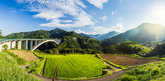 Rice field landscape and arch bridge in Takachiho, Miyazaki, Jap. An Stock Photo