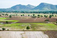 Rice field with mountain arid dry. At wat tham sua,kanchanaburi Royalty Free Stock Image