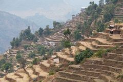 Rice field terraces at central Nepal Royalty Free Stock Photo