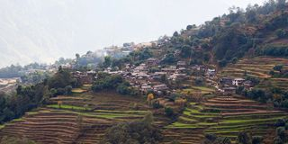 Rice field terraces in central Nepal Royalty Free Stock Photography