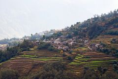 Rice field terraces at central Nepal Stock Photos