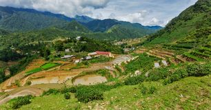 Rice field terraces. Near Sapa, Vietnam Stock Images