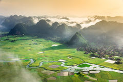 Rice field in valley in Bac Son, Vietnam Royalty Free Stock Photography