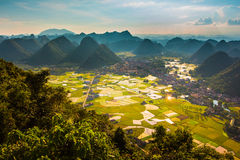 Rice field in valley in Bac Son, Vietnam Stock Image