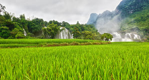 Rice field and waterfall Royalty Free Stock Photo