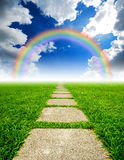 Rice field way on the green grass. Rice field way on the green field background cloud cloudy rainbow royalty free stock images