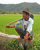 Rice Field Worker in the Harau Valley in West Sumatra, Indonesia Royalty Free Stock Photos