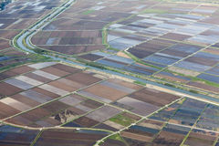Rice fields from aircraft window Royalty Free Stock Images
