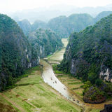 Rice fields in the early morning at Tam Coc, Ninh Binh, Vietnam Royalty Free Stock Image