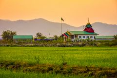 Rice fields and evening sunsets. Green rice fields With the background as the evening sun is falling royalty free stock photo