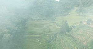 Rice Fields in Fire. Longsheng Rice Fields on fire, Guznxi Province, China. Aerial shot of cloud of smoke against background with terraced rice fields stock video footage