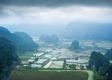 Rice fields at foggy morning. Ninh Binh, Vietnam Royalty Free Stock Photography