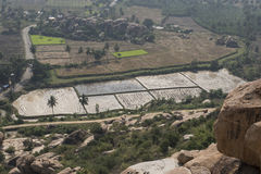 Rice fields. Hampi, India. Rice fields seen from the top of a mountain, in the archaeological complex of temples and ruins of Hampi, India royalty free stock image