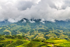 Rice fields and mountains in the clouds Stock Photo