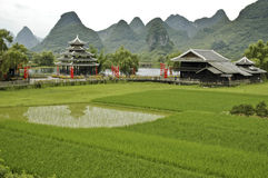 Rice Fields near Guilin. A rice field in Southern China under the shadows of the remarkable karst limestone mountains Stock Photography