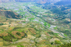 Rice fields in north Vietnam Royalty Free Stock Images