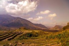 Rice fields on terraced mountain farm landscapes. Stock Photos