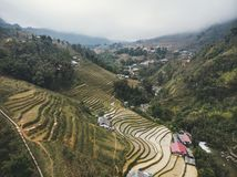 Rice fields on terraced mountain farm landscapes Lao Cai province, Sapa Viet Nam, Northwest Vietnam. Natural travel background royalty free stock photo